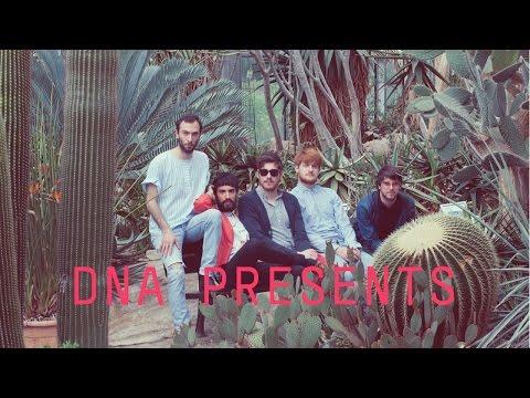 DNA Presents: NEWMEN