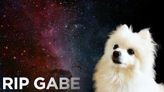 RIP Gabe
