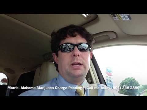 Morris, Alabama Marijuana Drug Crime Attorney - Drug Charge Marijuana Lawyer Morris, AL