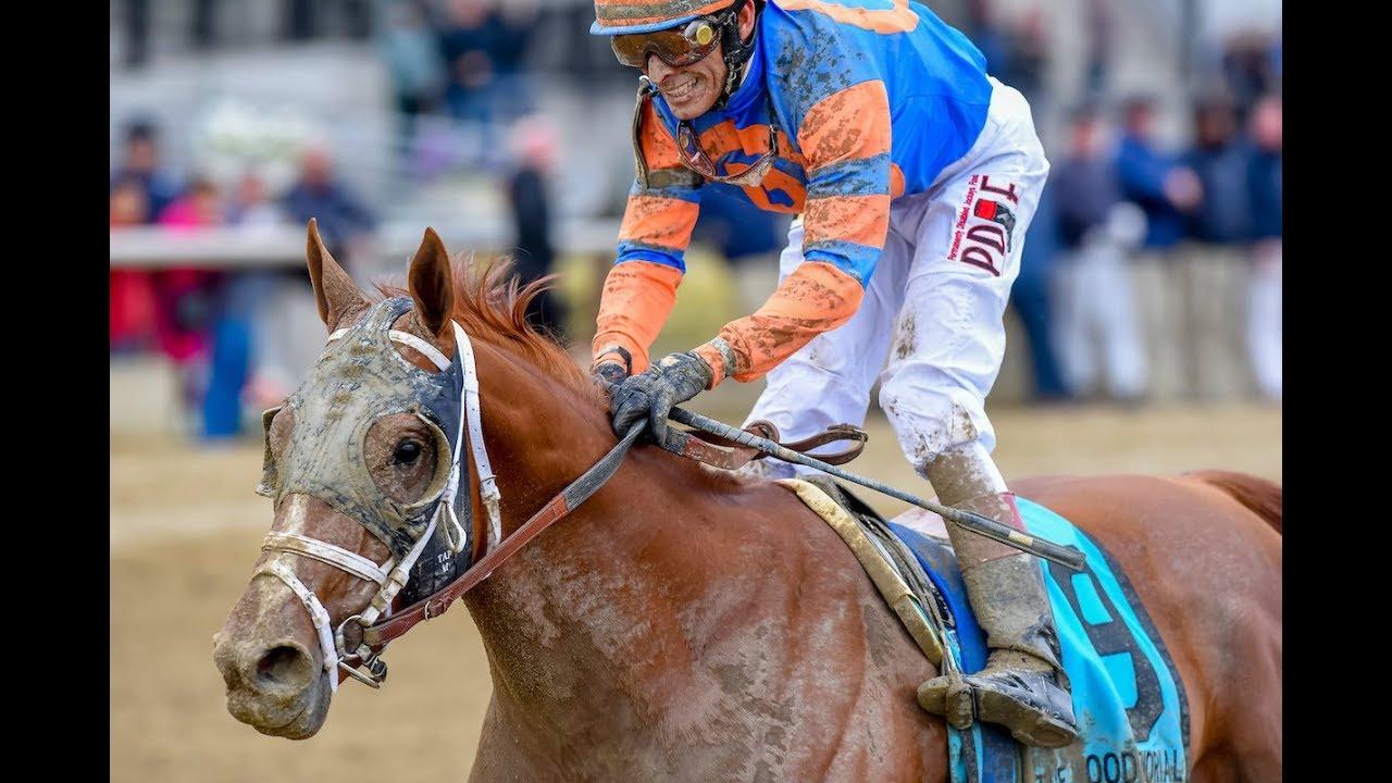 Jim Dandy Stakes 2018 picks and predictions