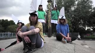 Rozi Plain - 'Best Team' (Official Video)