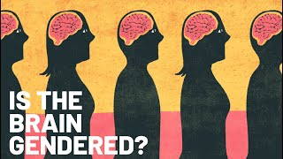 Is the Brain Gendered?: The Debate