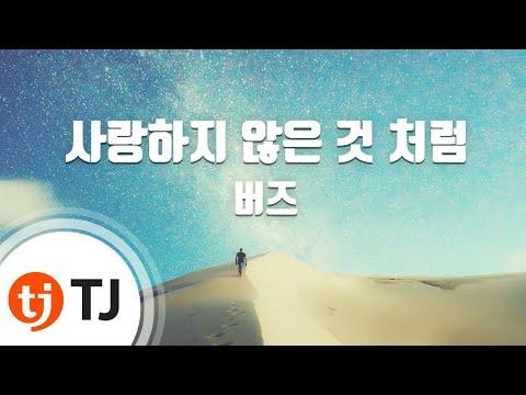 [TJ노래방] 사랑하지않은것처럼 - 버즈(Buzz) / TJ Karaoke