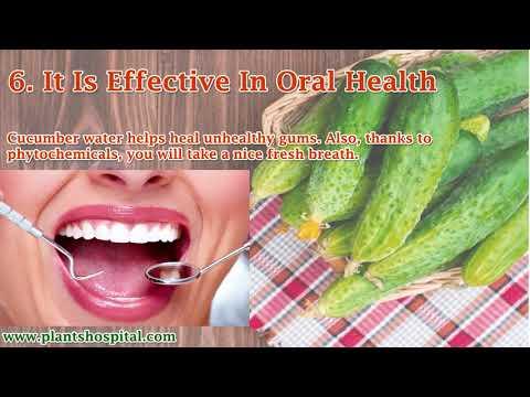 12 Superb Benefits Of Cucumber Water How to Make Cucumber Masks