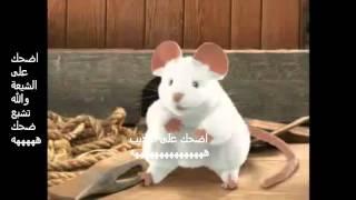 اضحك على الشيعة والله تشبع ضحك
