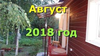 Обзор участка  в августе   2018года  ч. 1