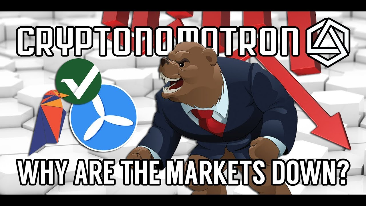 CRYPTO NEWS! My Opinion on the Current Bear Market! RVN, SHIP, TFD