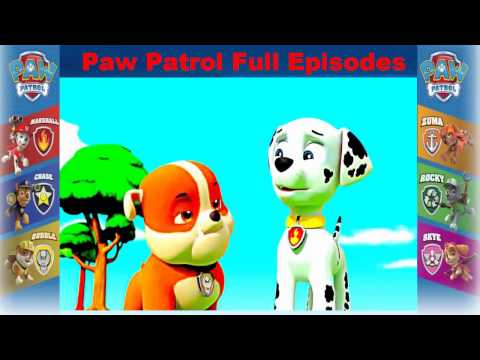 paw patrol pups save a ghost clip 1 youtube