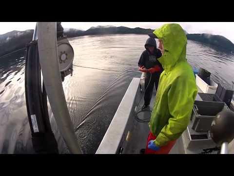 Crabbing Alaska