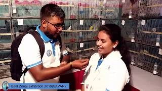 SAVAR Budgerigar zonal competition 2019