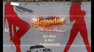 Reggaeton mix DJ MIG 2015