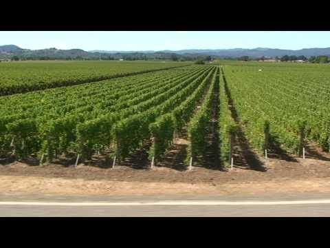 Bicycle-tours-wine-country-sojourn.mov