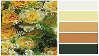видео Выбор цвета для каждой комнаты