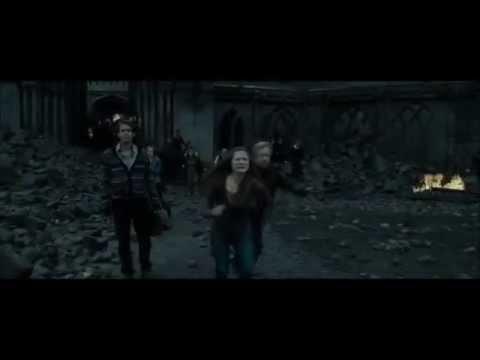 Human-Harry Potter