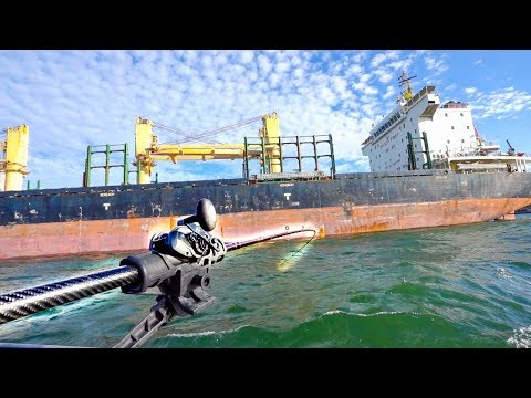 Catching BIG FISH Near GIANT SHIPS For Food! Fishing Pacific Northwest's Famous Buoy 10