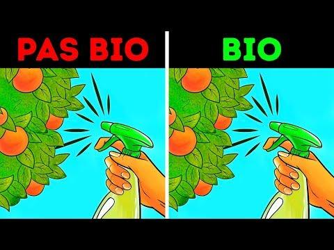 Les Aliments Bio : Régime Sain ou Grand Mythe ?