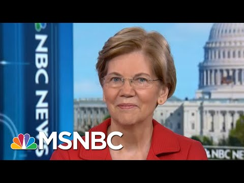 Senator Warren Tackles Russian Meddling, Money In Politics & 2020 | Andrea Mitchell | MSNBC