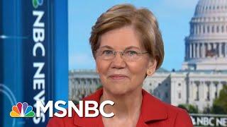 Senator Warren Tackles Russian Meddling, Money In Politics & 2020 | Andrea Mitchell | MSNBC