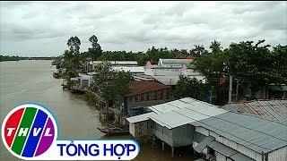 THVL | Chủ động chằng chống nhà cửa trong mùa mưa bão
