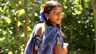 Naa alayuren video songnaa alayuren video song