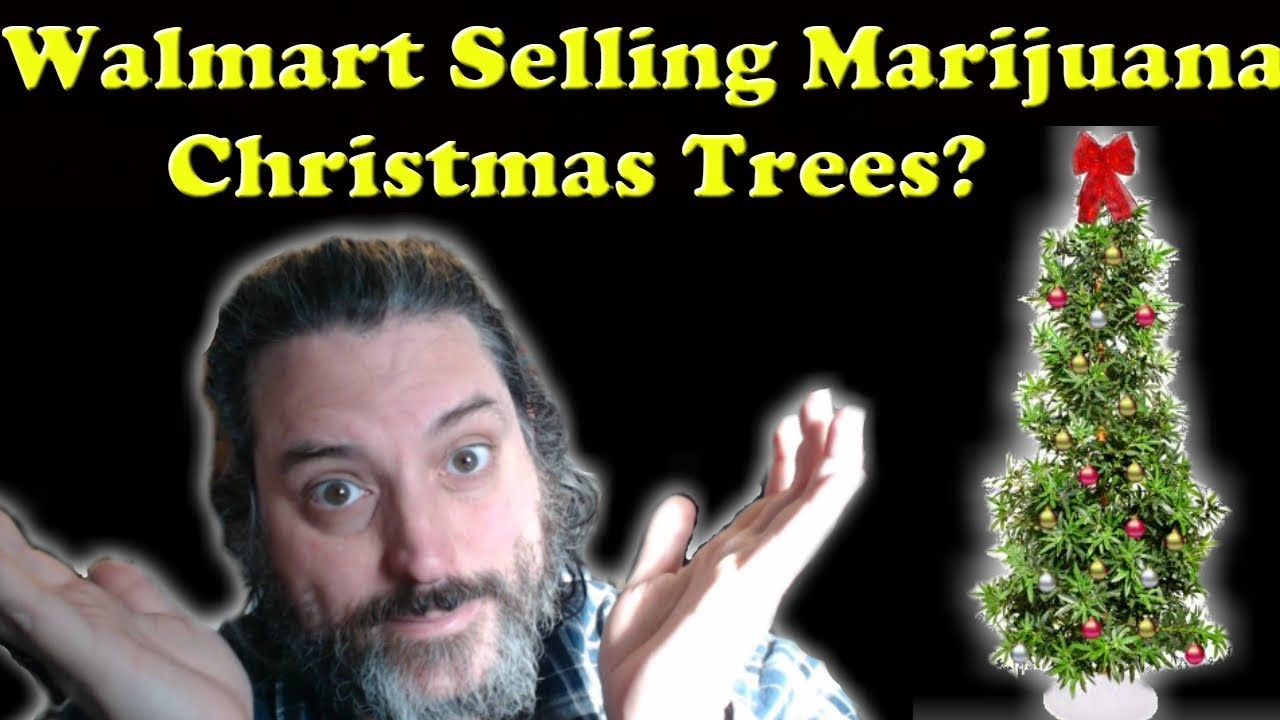 Walmart is Selling Marijuana Christmas Trees? - YouTube