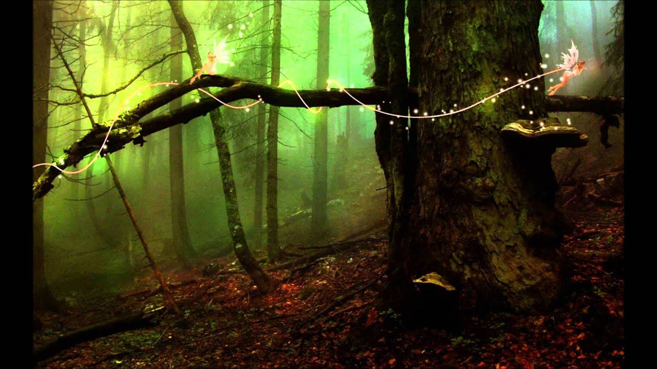 Fall Fairy Wallpaper Adrian Von Ziegler Fairy Forest Youtube