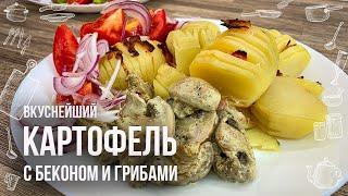 КАРТОШКА В ДУХОВКЕ С БЕКОНОМ Рецепт запеченнои картошки с грибами ВКУСНО И БЮДЖЕТНО