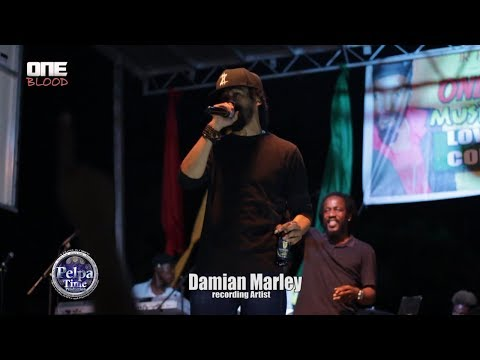 Damian Marley and Wayne Marshall  Performance LIVE at ONE BLOOD  MUSIC FESTIVAL