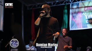 """Damian """"Jr. Gong"""" Marley and Wayne Marshall  Performance LIVE at ONE BLOOD  MUSIC FESTIVAL"""
