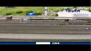Kymi Grand Prix Finlande 2012_Commander Crowe_Ch. Martens