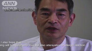 """""""アレルギーにキスが効く"""" イグ・ノーベル医学賞(15/09/18)"""