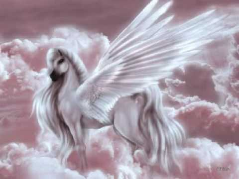 Pegasus And Unicorn