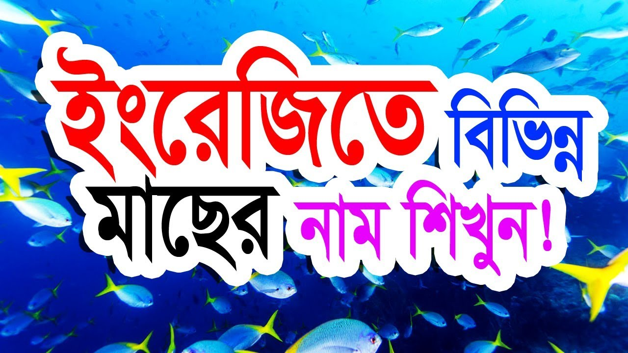 English to Bangla (Name of the Fish) by IT Future