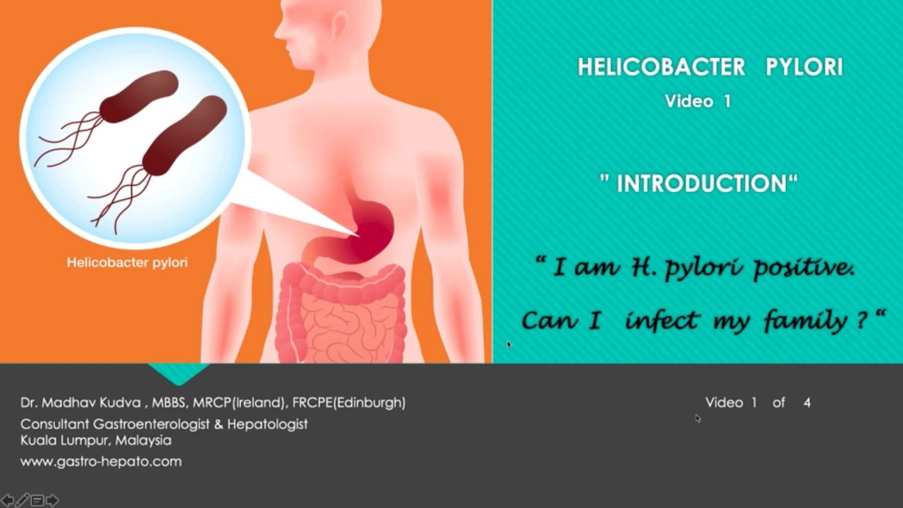 HELICOBACTER PYLORI - Introduction