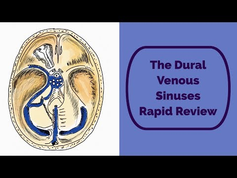 the-dural-venous-sinuses-rapid-review