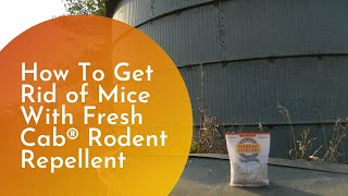 How To Get Rid of Mice With Fresh Cab Natural Rodent Repellent