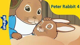 Peter Rabbit 4 | The Garden Gate | Classics | Little Fox | Animated Stories For Kids