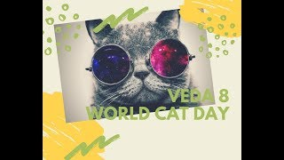National World Cat Day | VEDA Challenge Day 8