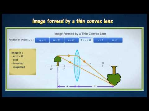 [5.4] Images formed by convex lens and concave lens