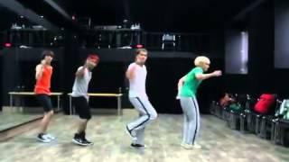 S4   Driving Me Crazy Dance Practice [Reupload]