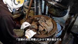 櫨・木蝋の灯り~本多木蝋工業所~