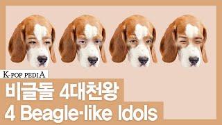 [k-pop Pedia(케이팝피디아)] Idol + Beagle = ? [eng/jpn/chn Sub]