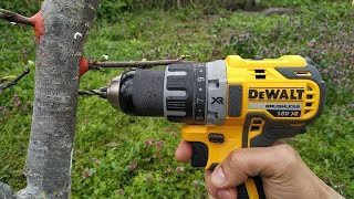 Download lagu grafting plum drill. Прививка дрелью