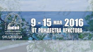 Мультимедийный православный календарь на 9-15 мая 2016 года(Мультимедийный календарь представляет собой краткое освещение основных праздников и событий на предстоящ..., 2016-05-07T04:52:42.000Z)