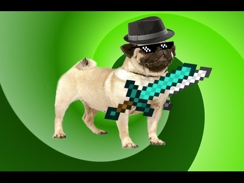 Mlg Pug Youtube