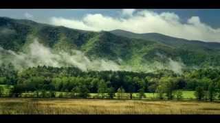 Cerise et Potiron : producteur de salades