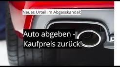 2019 06 19 OLG Koblenz