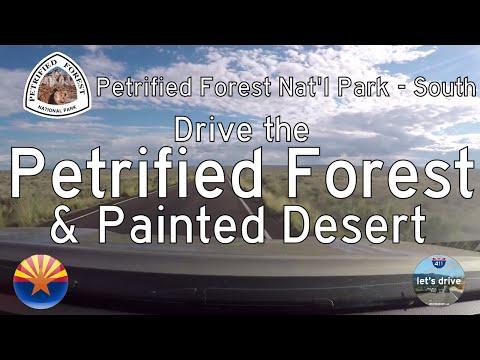Petrified Forest Nat'l Park - South - Arizona | Drive America's Highways 🚙
