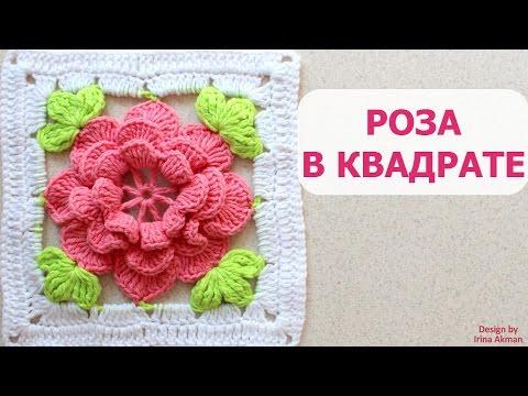 Розы Чайно гибридные сорта и фото