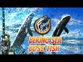 Fishing Hook Gameplay Lv. 40 - Boss Fish at Bering Sea: Gray Whale | Hard Fighting